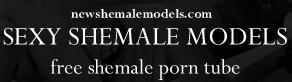 New Shemale and Ladyboy Categories